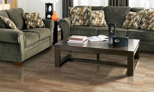 Tông màu nâu gỗ đa dạng tạo cho phòng khách sự nổi bật