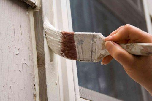 sơn cao su, sơn latex
